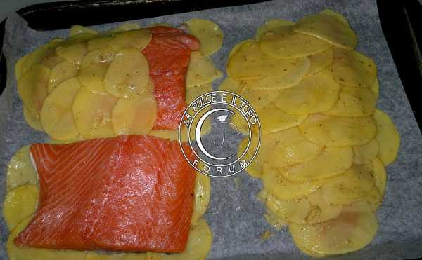 salmone_in_crosta_di_patate4.jpg